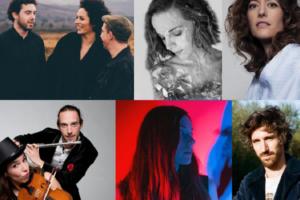 6-artistes-français-folk